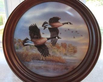 Collector Plate 'Golden Flight: Canada Geese' by Darrell Bush