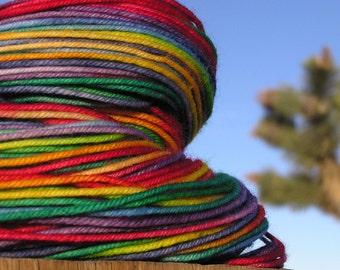 Sport Weight Yarn - BFL Wool- Superwash - Rainbow