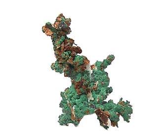 Green Malachite Crystalline druzy on Native Copper Tree,  Arborescent Form with cuprite and quartz, Sahara African Natural Gemstone