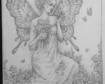 Rose Fairy by Renae Taylor (original drawing)