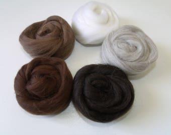 "50g wool felting or spinning Merino 5 ""Brown"" color set"