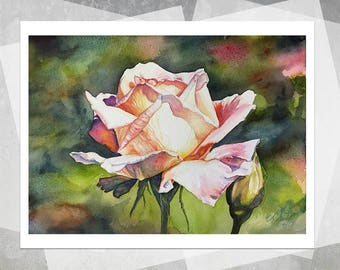 Judy's Rose Giclee Print - Realistic Watercolor Painting, Realistic Flowers, Realistic Rose, Botanical Painting, Floral, Gift