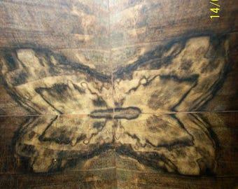 Painted wood, butterfly, butterfly on tree, butterfly, picture livingroom art, tree, wooden,livingroom art, decor art tree