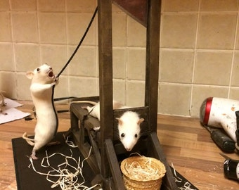 The guillotine free worldwide shipping taxidermy rats