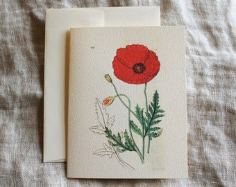 Poppy Flower Folded Notecards with Envelopes | Rustic Greeting Card | Blank Note Cards | Botanical Note Cards | Gift for Her | Easter Card