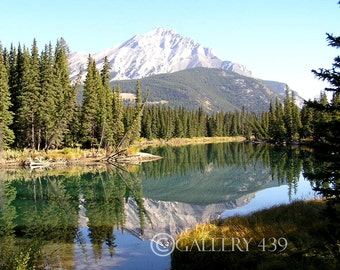 "Banff ""Reflection"" Photography Home Decor - Canadian Rockies Mountain Stream Nature Canada Fine Art Portrait Photo"