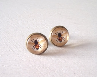Bee Bug Insect Earrings vintage illustration