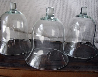 Trio of Glass Bell Jars or Cloches