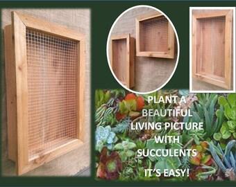 Reclaimed Wood Vertical Succulent Cedar Planter Box Wire Hanging Large Living Wall Art Herb Gardener Wedding Housewarming Party Gift Ideas