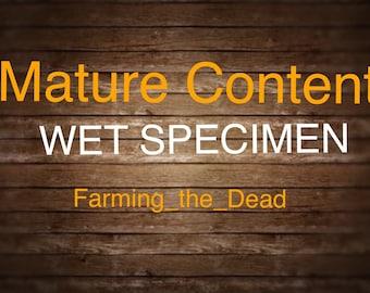 Adorable Piglets Foot (stillborn) Wet Specimen in vial