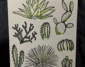Desert Plants Greeting Card