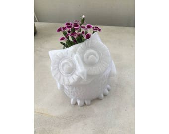 Large Smiling Owl Planter, Plant Pot, Planter, Succulent Planter, Cute Planter, Animal Planter,  Indoor Planter, Fun Planter, Desk Planter