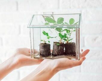 Small Greenhouse / Geometric Glass Terrarium / Stained Glass Terrarium / Handmade Glass Terrarium / Succulents Planter