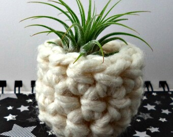 White Solid Air Plant Pot