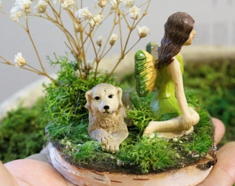 Yellow and Green lady fairy-Birch slab-Preserved baby breath-Ivory dog-Reindeer moss