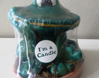 Hermitage pottery frog candle in Terra Cotta Pot