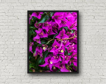 Purple Flowers Print / Digital Download / Fine Art Print/ Wall Art / Home Decor / Color Photograph / Nature Print / Nature Photography