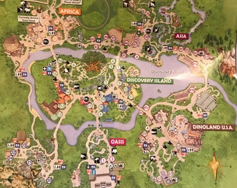Custom made disney map necklace - Animal Kingdom