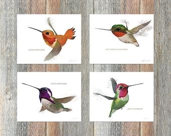 Notecards --Hummingbirds