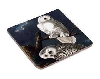 Snowy Owls - Coaster
