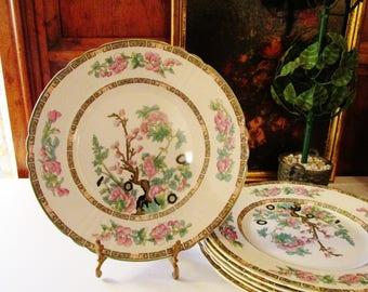 Vintage Myott Indian Tree Plate, English Ironstone Dinner Plate, Chinoiserie Dinnerware, Palm Beach Decor, Tree of Life