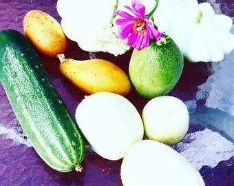 Crystal Apple Cucumber Seeds