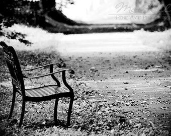 Black & White Photography - A Quiet Place - 8x12 fine art print - park bench woodland serene light shadow monotone wall art home decor