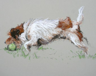 Jack Russell Terrier art print dog gift dog lover gift LE print from an original soft pastel available unmounted or mounted ready to frame