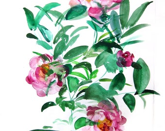 Peonies - Floral Illustration - Art Watercolor - Spring - Large Print 16x20 - Poster - Wall Art - Wall Decor