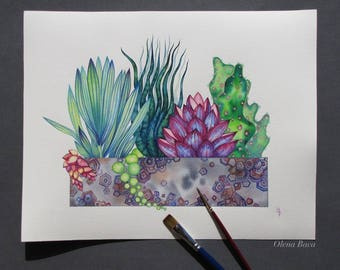 """Original Watercolor Art/ Succulents Painting 11""""x14"""" by Olena Baca/ Wall Decor/ Gift Idea/ Gift for Mom"""
