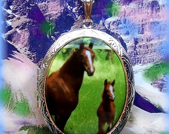Porcelain Brown SADDLEBRED HORSE & Colt Foal in Green Meadow Cameo Costume Jewelry Silvertone Locket Pendant Necklace Cameo w/ 24 Inch Chain
