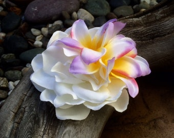 Gardenia Plumeria, Bridal, Tropical silk flower hair clip