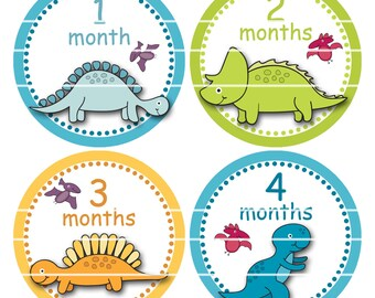 Milestone Stickers First Year Stickers Baby Month Stickers Monthly Stickers Dinosaur Baby Stickers Baby Boy Shower Gift B66