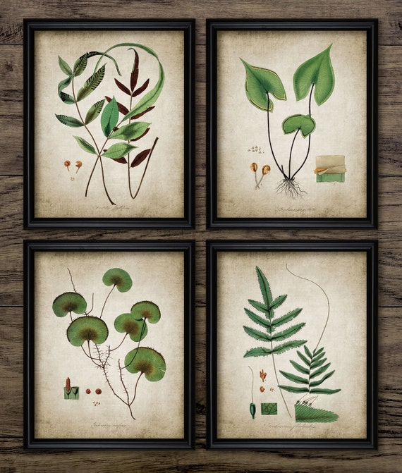 Green Plant Print Set of 4