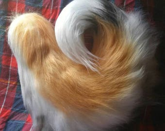 BYO : Curled tail. Limited Customization.