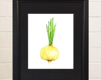Vegetable Painting - Watercolor Print - Food Art - Veggie Art - Onion Painting, Food Painting, Kitchen Art, Veggie Print - Onion Picture
