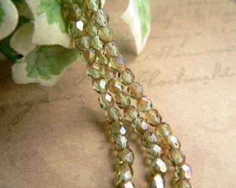 Green Czech Glass Beads Chrysolite Celsian Round Firepolished 4mm (50)