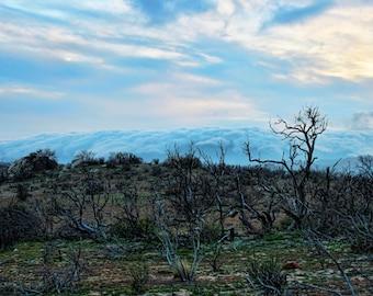 Outlying Storm, Cloudy Skies, Barren Land, Trees, Anza-Borrego Desert, California