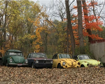 "Three VW'S and a BMW- (14"" x 11"") - Photograph - FREE Shipping!"