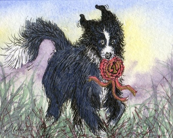 Border Collie dog 8x10 Susan Alison art print from watercolor painting sheepdog winner champion victory rosette triumphant black and white