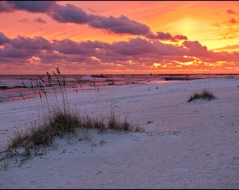 Beach Photography, Orange Beach, Alabama, sunset, salt life