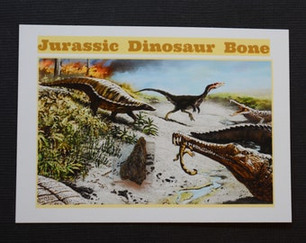 Dinosaur Bone Fossil *** Great Collector's Piece for Youth **** ETD002