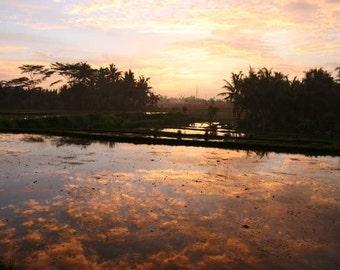 BT/ sunset photography Bali travel photo print golden reflection water pond print purple clouds exotic rice field zen peaceful meditation