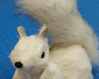 SPC Squirrel (016)