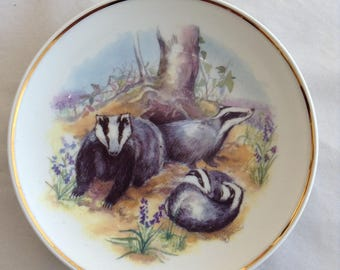 Wildlife of Badgers Collectable Plate