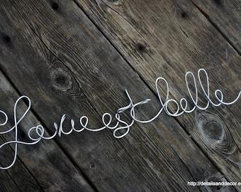 Elegant French Decor La Vie Est Belle Wall Sign
