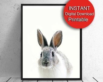 Printable, Bunny Print, Nursery Decor, Bunny Rabbit Print, Cute, Woodland Nursery 5x7 8x10 11x14 16x20 A3 A4