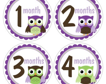 12 Monthly Baby Milestone Waterproof Glossy Stickers - Just Born - Newborn - Weekly stickers available - Design M031-03