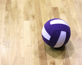 Balloon Volleyball, Fabric Covered, Light Weight, Starter Volleyball for Toddlers or Youth Players