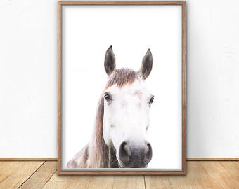 Horse Printable, Farm Animal Print, Digital Download, Equine Photography, Shabby Chic Decor, Nursery Art, Kitchen Poster, Pony Art Print